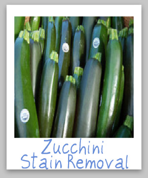 How to remove zucchini stains from clothing, upholstery and carpet {on Stain Removal 101}