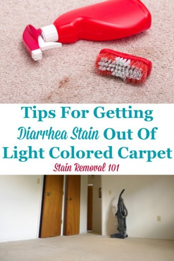Tips for getting a diarrhea stain out of light colored carpeting {on Stain Removal 101} #CarpetStainRemoval #CarpetStains #CarpetCleaning