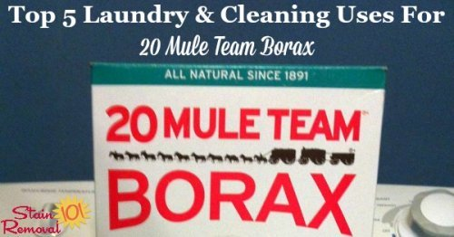 Top five 20 Mule Team Borax uses for laundry and cleaning around your home {on Stain Removal 101}