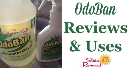 Odoban Odor Eliminator reviews and uses, for all around your home, for odor removal, cleaning, disinfecting and sanitizing, lots of household surfaces including washable items, fibers such as upholstery and carpet, as well as many hard surfaces {on Stain Removal 101} #OdorRemoval #Sanitizer #Deodorizer