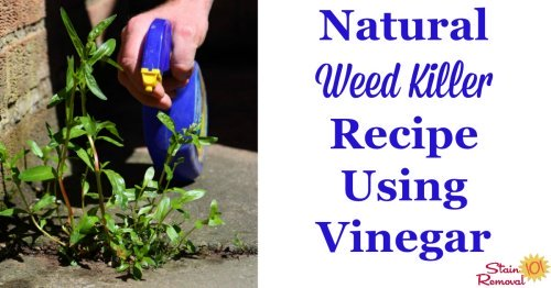 Natural weed killer recipe, using vinegar {on Stain Removal 101}