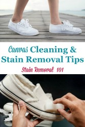 Canvas Cleaning Tips