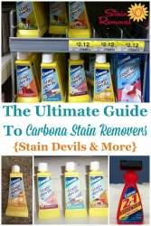 Ultimate Guide To Carbona Stain Remover