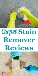 Carpet Stain Remover Reviews