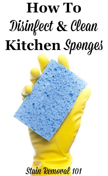 How to clean and disinfect kitchen sponges {on Stain Removal 101} #CleaningTips #CleaningHacks #KitchenCleaning