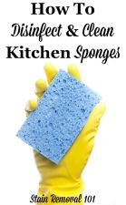 How To Clean Sponge In Microwave