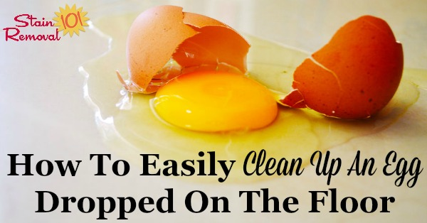Simple trick for how to clean up an egg that you've dropped on the floor {on Stain Removal 101} #CleaningTips #KitchenCleaning #CleaningHack