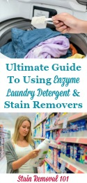 Enzyme Laundry Detergent & Stain Removers