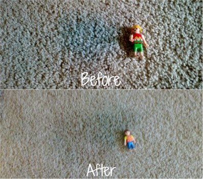 carpet paint. finger paint in carpet not removed with folex n
