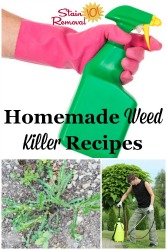 Homemade Weed Killers Recipes