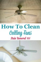 Clean Ceiling Fans