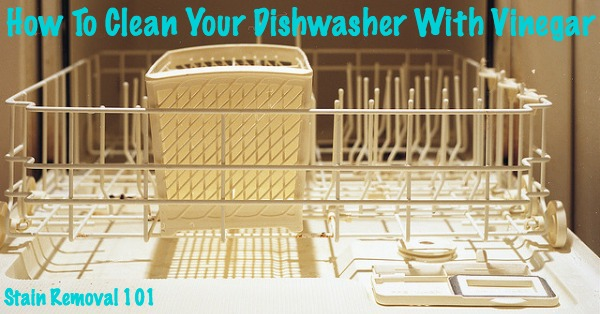 How to clean dishwasher with vinegar {on Stain Removal 101} #CleanDishwasher #UsesForVinegar #VinegarUses