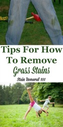 Remove Grass Stains