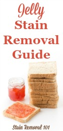 Jelly Stain Removal Guide