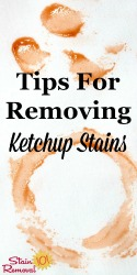 Removing Ketchup Stains