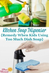 DIY Kitchen Soap Dispenser