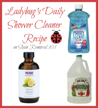 Marvelous Ladybugu0027s Daily Shower Cleaner
