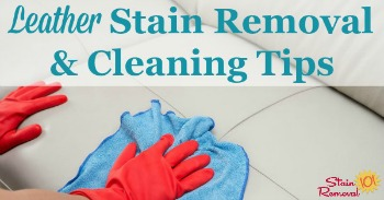 Leather stain removal and cleaning tips