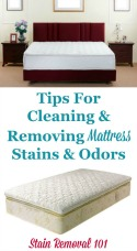 Cleaning & Removing Mattress Stains