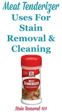 Meat Tenderizer Uses For Stain Removal