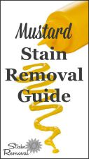 Mustard Stain Remova
