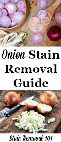 Onion Stains