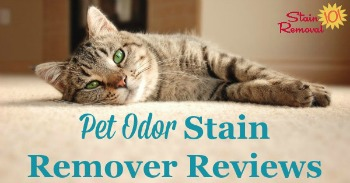 Pet odor stain remover reviews
