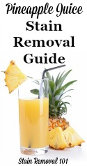 Pineapple Juice Stain Removal Guide