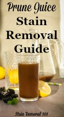 Prune Juice Stain Removal Guide