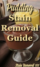 Pudding Stain Removal Guide