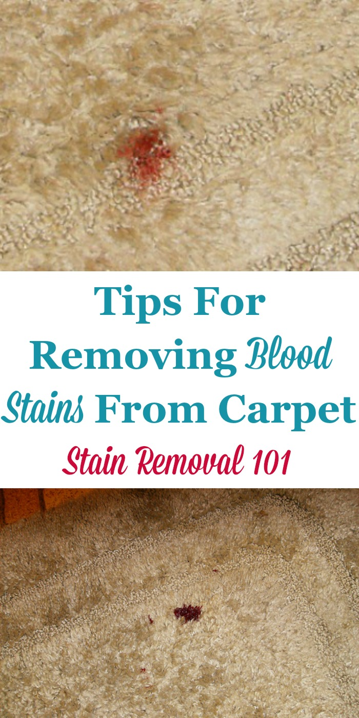 Tips for removing blood stains from carpet {on Stain Removal 101} #CarpetStains #StainRemoval #BloodStains