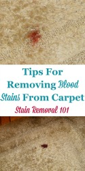 Tips For Removing Blood Stains From Carpet