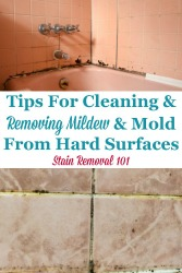 Cleaning & Removing Mildew