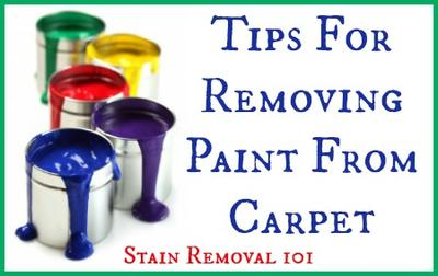 Removing Paint From Carpet Tips Home Remes