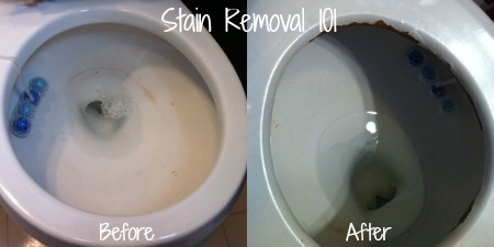 Soft Scrub 4 in 1 toilet care before and after pics