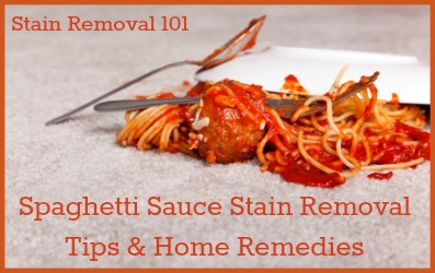 Carpet Cleaning Home Remedies The Best Ever Homemade