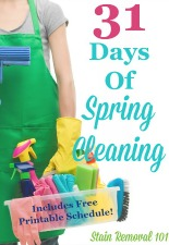 31 Days Of Spring Cleaning