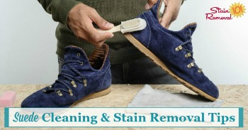 Suede cleaning and stain removal tips