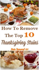 Thanksgiving Stains