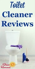 Toilet Cleaner Reviews
