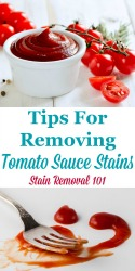 Removing Tomato Sauce Stains