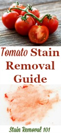 Remove Tomato Stains