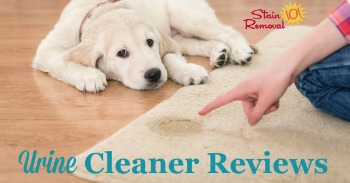 Urine cleaner and stain remover reviews