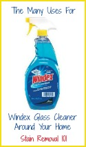 uses for windex