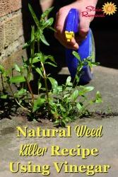 Using Vinegar As A Natural Weed