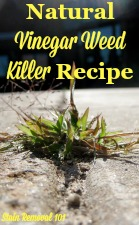 Natural Vinegar Weed Killer Recipe