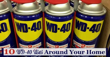 10 WD-40 uses around your home
