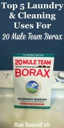 20 Mule Team Borax Review Plus Top 5 Laundry & Cleaning Uses For It