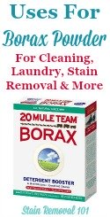 Uses For Borax Powder