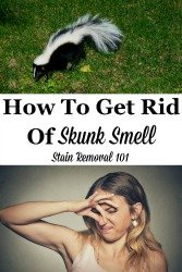 Get Rid Of Skunk Smell